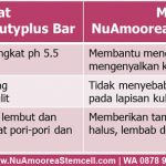 Fungsi dan Manfaat Sabun Nu Amoorea Beauty Plus Bar