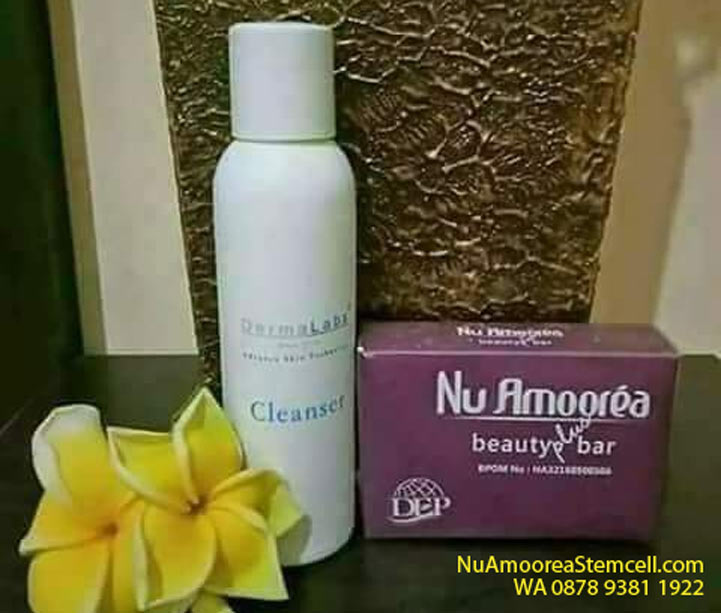 Manfaat Cleanser Amoorea